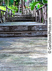 Stone stairs in the garden