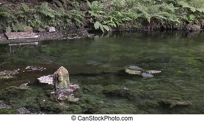 Stone statue on pond - Japanese god stone statue on spring...