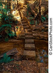 Stone Steps - A trail made of stone steps leads over a ...