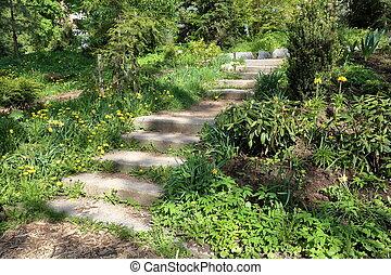 Stone steps in a garden