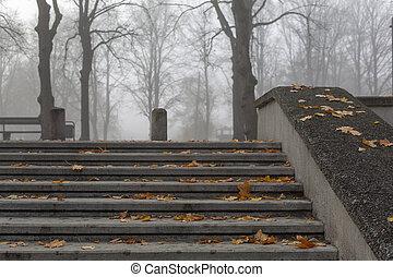 Stone steps in misty autumn park - Stone steps in misty...