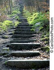 Stone steps - stone steps in woodland