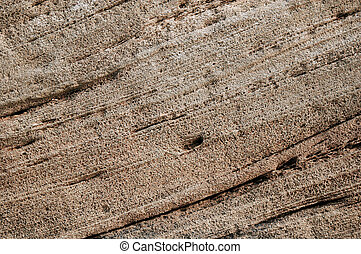 Stone texture