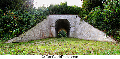 tunnel in the nature