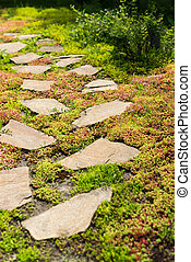 Stone walkway on green grass in the garden.