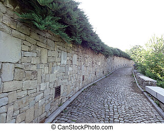 Stone Wall and a Path