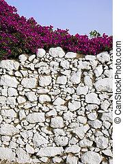 Stone wall and bougainvillea
