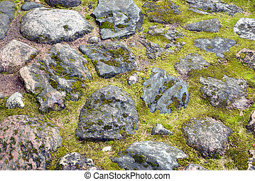 stone wall texture with moss