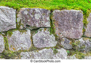 Stone wall with green moss .