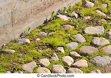 Stone with green grass. Texture or background.