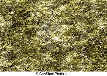 Stone with lichen 3D texture