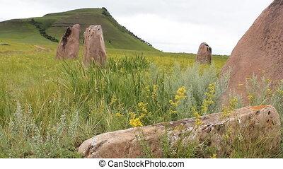 Stones 26 - Standing stones.