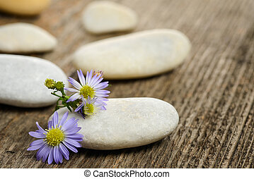 Stones and flowers on wood background