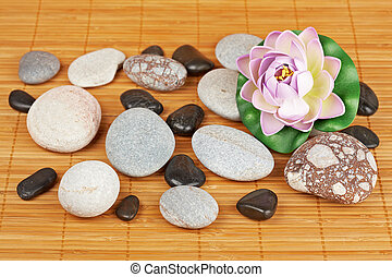 Stones and flowers