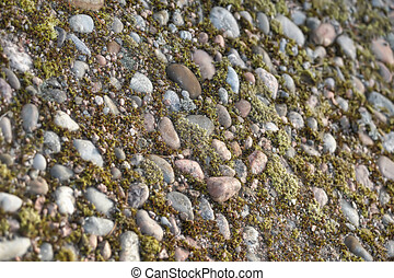stones and moss background