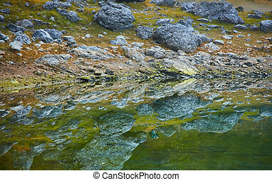 Stones and trees are reflected in the Carezza lake Karersee , UNESCO World Natural Heritage Site, Nova Levante, South Tyrol