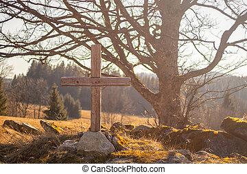 stones, grafické pozadí, big, dávný, dřevěný, strom, les, louka, kříž