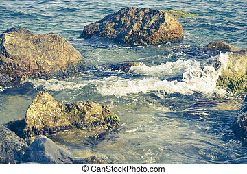 stones in clear water near the shore