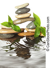 Stones in water with leaves