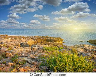 stones into the sea