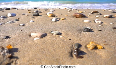 stones on sand near seaside