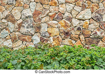 stones rocks wall texture background with plant