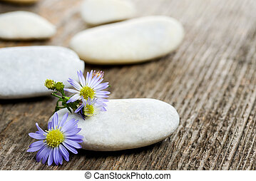 Stones stacked with purple flower on the table
