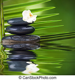 stones, water and leaves, spa