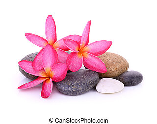 stones with frangipani flower isolated on white