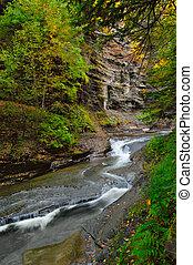 Stony Brook Creek - Stony Brook Park, Upstate NY