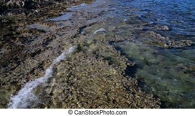 Stony Coast of Mediterranean Sea near the island of Cyprus -...