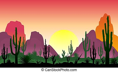 Stony desert with cacti - Sunset in the desert. Silhouettes...