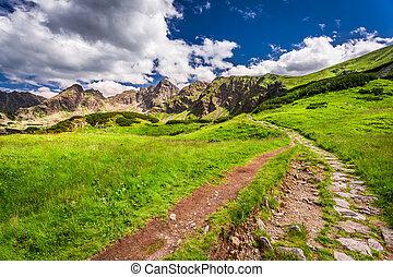 Stony footpath in the Tatras Mountains, Poland, Europe