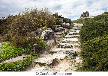 Stony stairs in the rockery in Kyiv botanical garden