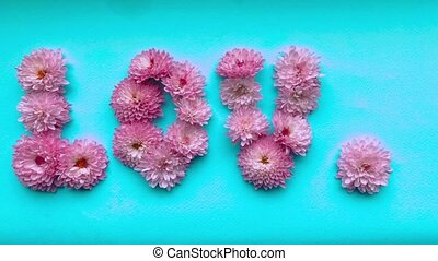 Stop motion animation the word love of pink chrysanthemum flowers appears and then disappears on a delicate blue background.
