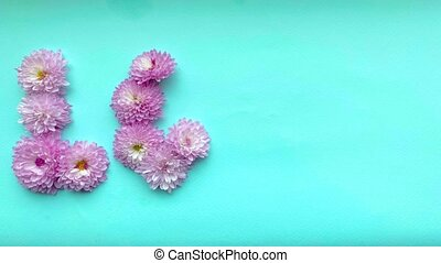 Stop motion animation the word love of pink chrysanthemum flowers disappears on a gentle blue background.