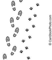 stopa nadrukowuje, od, człowiek, i, pies