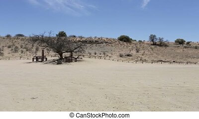 stopover rest place in Kgalagadi transfontier park, game...