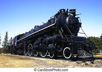 stor, damp tog