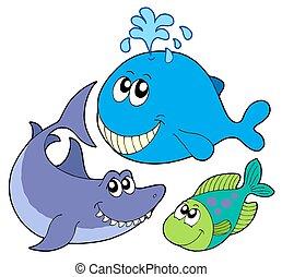stor, fiskar, kollektion