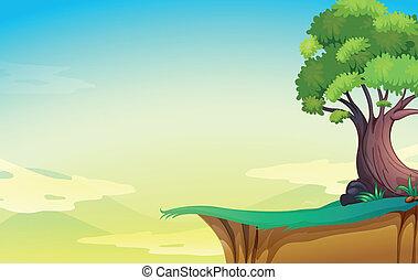 stor, gammalt träd, klippa
