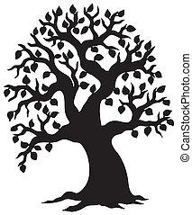 stor, lövad träd, silhuett