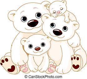 stor, polar björn, familj