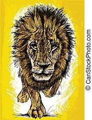 stor, skiss, manlig lejon, afrikansk