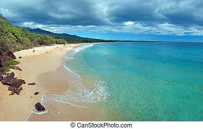 stor, strand, på, maui, hawaii ö