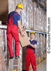 storekeepers, durante, lavoro, in, uno, magazzino