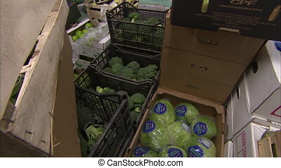 Storing broccoli and cabbage - A moving shot of broccoli and...