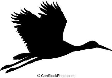 stork., animal, bird., silhouette, voler
