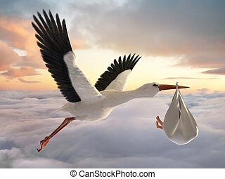 Stork & Baby - Classic depiction of a stork in flight...