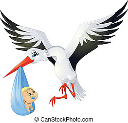 stork - the stork has brought the baby in its beak